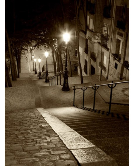 CUADRO FOTOGRAFIA DE PARIS EN SEPIA MONTMARTRE Home