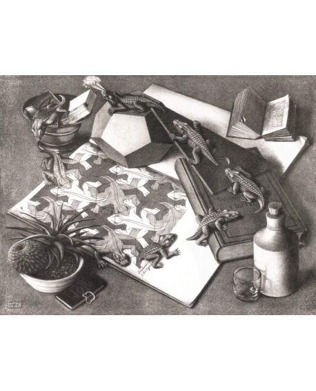 Escher Perspectivas Imposibles Bodegon de Los Lagartos Home