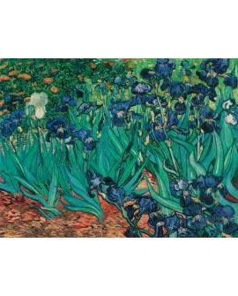 Van Gogh los lirios en jardin cuadro impresionista en reproduccion Home