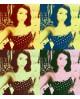 Cuadro Personalizado tipo Warhol POP ART por encargo en grande Home