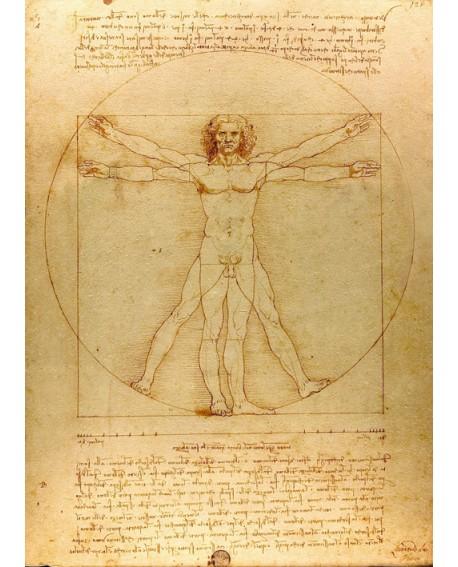 Vitruvio Leonardo da Vinci Las proporciones Mural Clasico Home