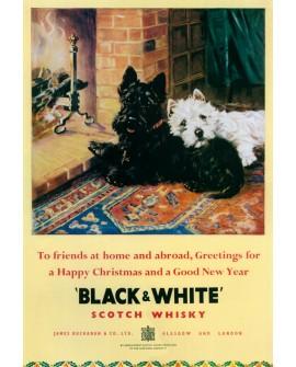 Black & white Cartel Gigante de bar Perros blanco y negro UK Home
