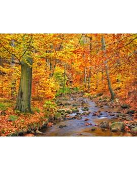 frank krahmer paisaje de otoño europeo con rio cuadro mural