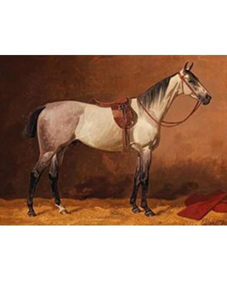 emil volkers cuadro clasico caballo blanco carreras Home