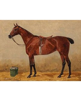 emil volkers cuadro clasico caballo marron carreras Home