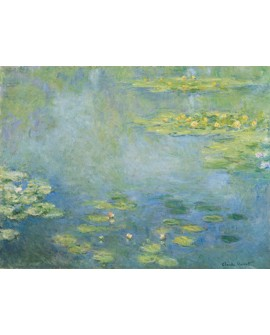 monet cuadro impresionista plantas y flores en lago 2 Home