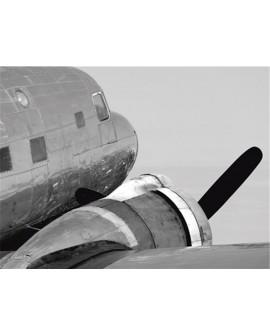 Fotografia clasica blanco y negro cuadro cabeza avion Home