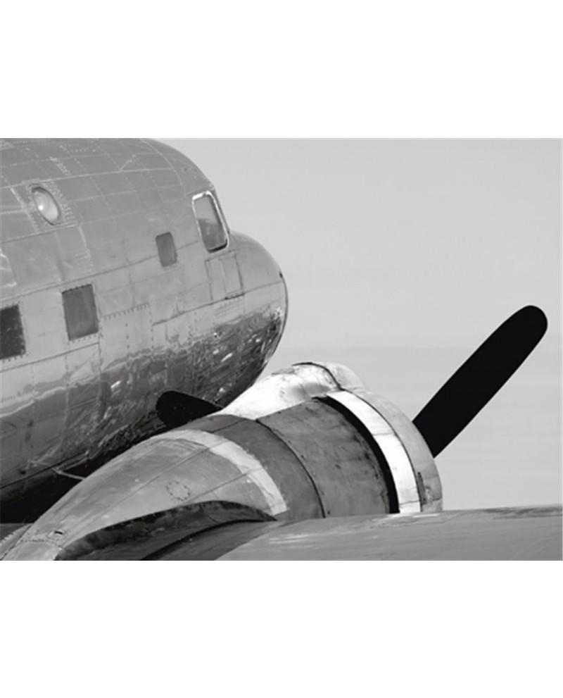 Fotografia clasica blanco y negro cuadro cabeza avion Descripción d...
