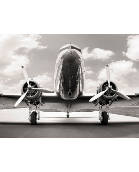 Fotografia clasica blanco y negro cuadro frontal avion 2 Home