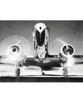 Fotografia clasica blanco y negro cuadro frontal avion Home