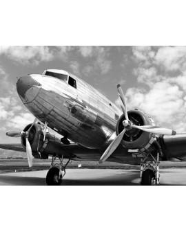 Fotografia clasica blanco y negro cuadro lateral avion
