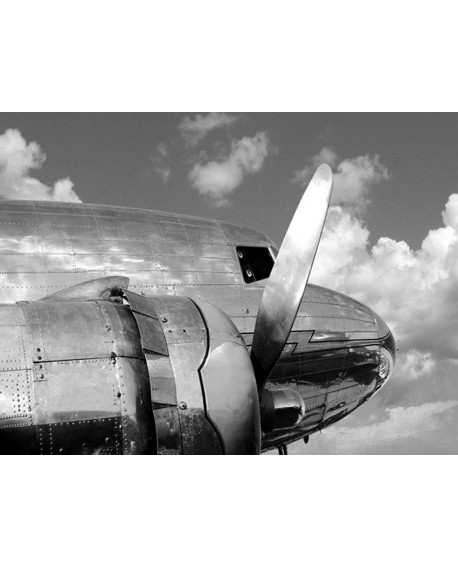 Fotografia clasica blanco y negro cuadro morro avion Home