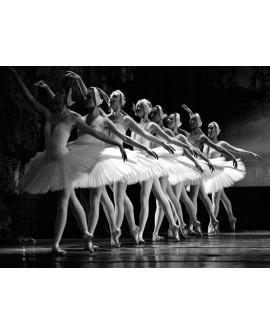 Fotografia clasica blanco y negro danza bailarinas ballet Home