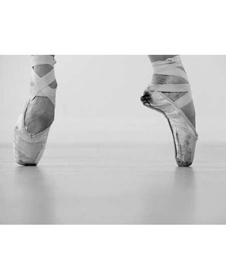 Fotografia clasica blanco y negro cuadro zapatillas ballet Home