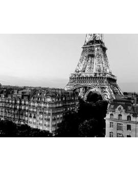 Fotografia clasica blanco y negro torre eiffel casas paris Home