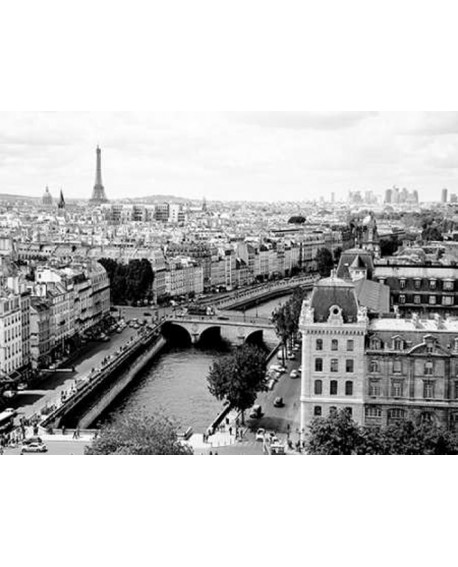 Fotografia clasica cuadro vista de paris rio sena Home