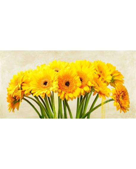 alex vinci cuadro mural cabecero flores gerberas panoramico Cuadros Horizontales