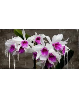 alex vinci cuadro mural cabecero flores orquideas panoramico Cuadros Horizontales