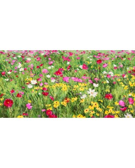silvia mei cuadro mural flores en primavera impresionista