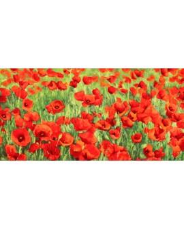 silvia mei cuadro mural campo de amapolas impresionista Cuadros Horizontales