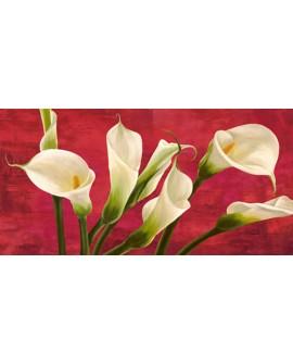 serena biffi cuadro flores calas blancas panoramico Cuadros Horizontales