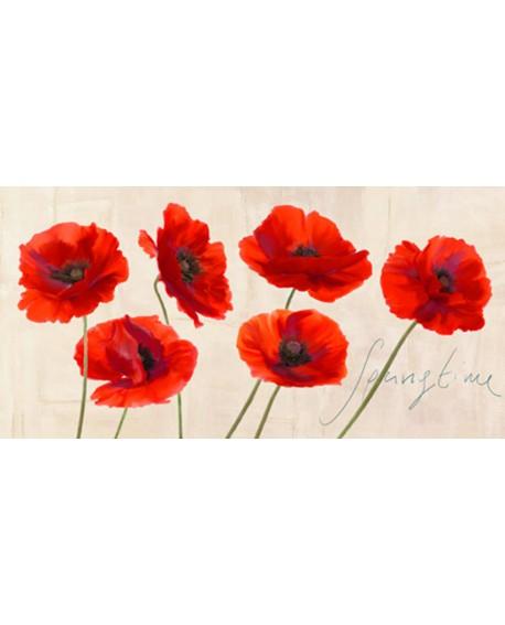 teo rizzardi cuadro flores amapolas acuarela Cuadros Horizontales