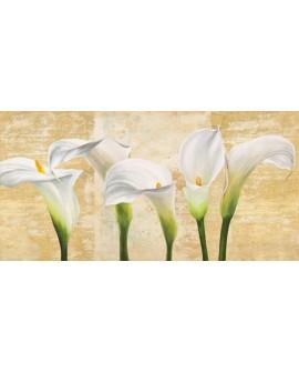 jenny thomlinson cuadro mural flores calas 2 panoramico Cuadros Horizontales