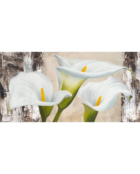 jenny thomlinson cuadro mural flores calas panoramico Cuadros Horizontales