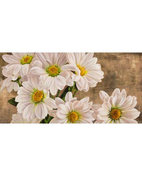 jenny thomlinson cuadro mural margaritas blancas Cuadros Horizontales